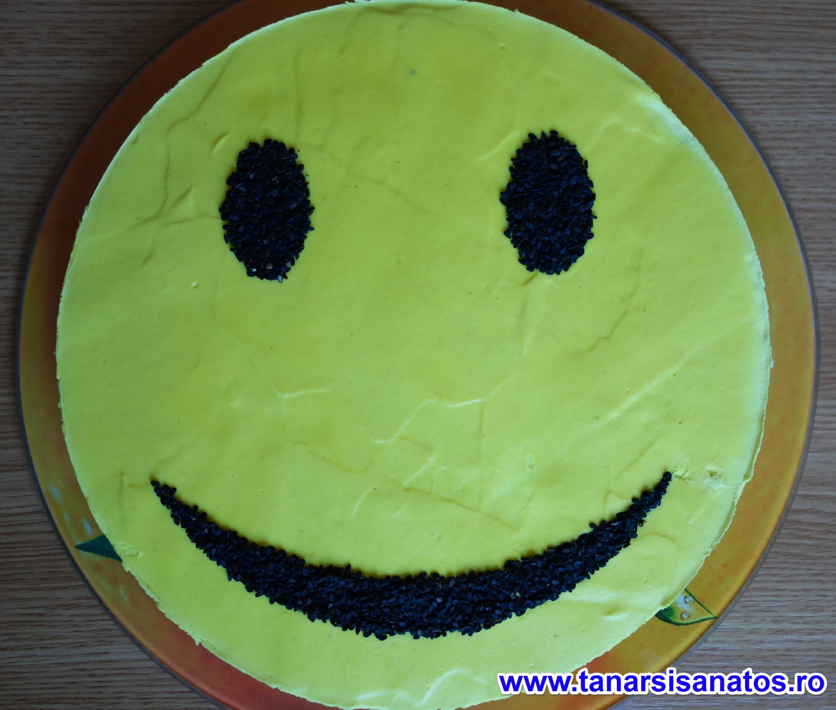 Tort Smiley TSS