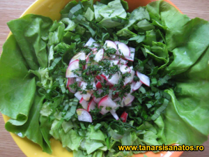 Salata de primavara TSS
